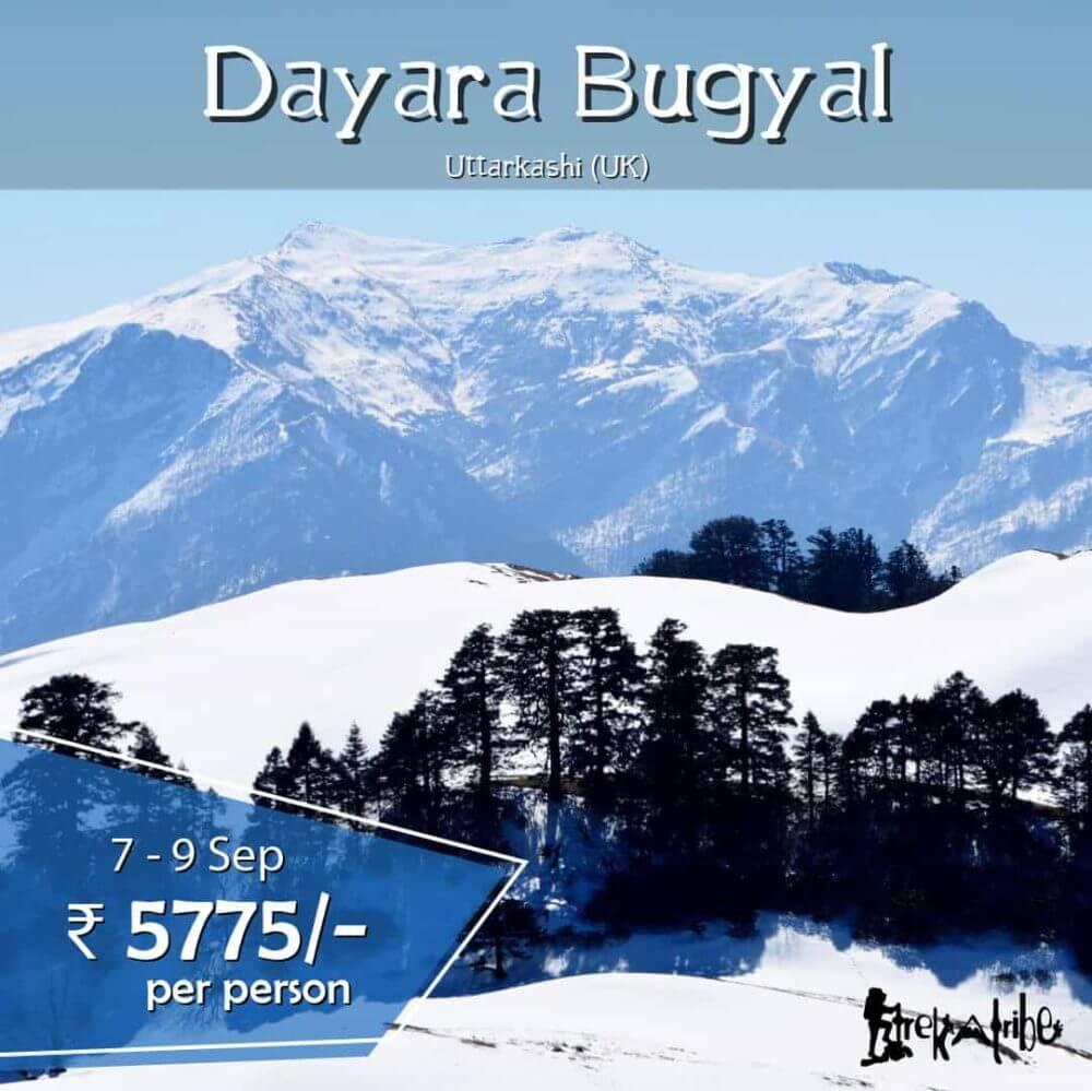 Dayara Bugyal - Trekking in Indian Himalayas