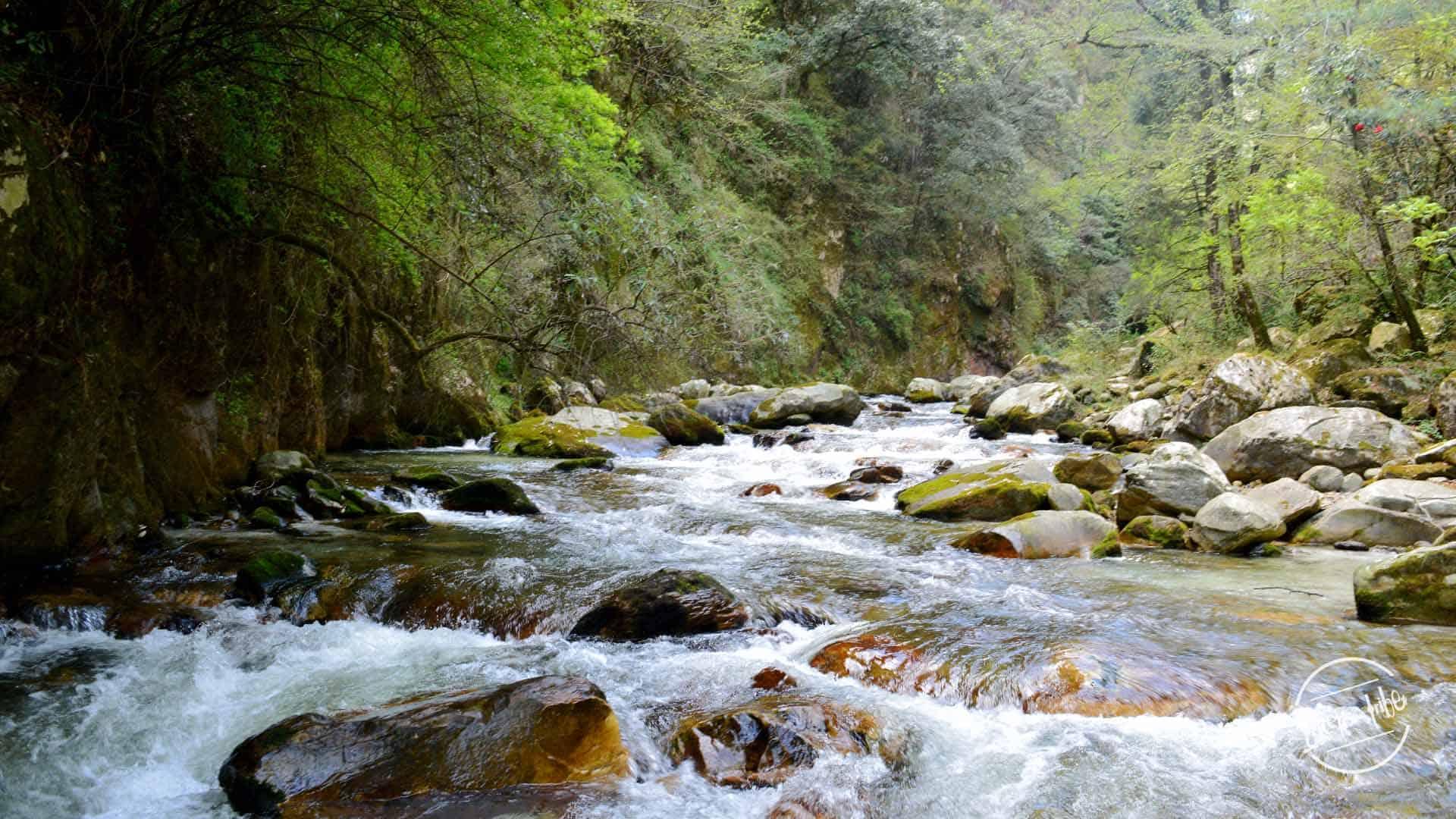 Grahan Village Trek - Parvati river