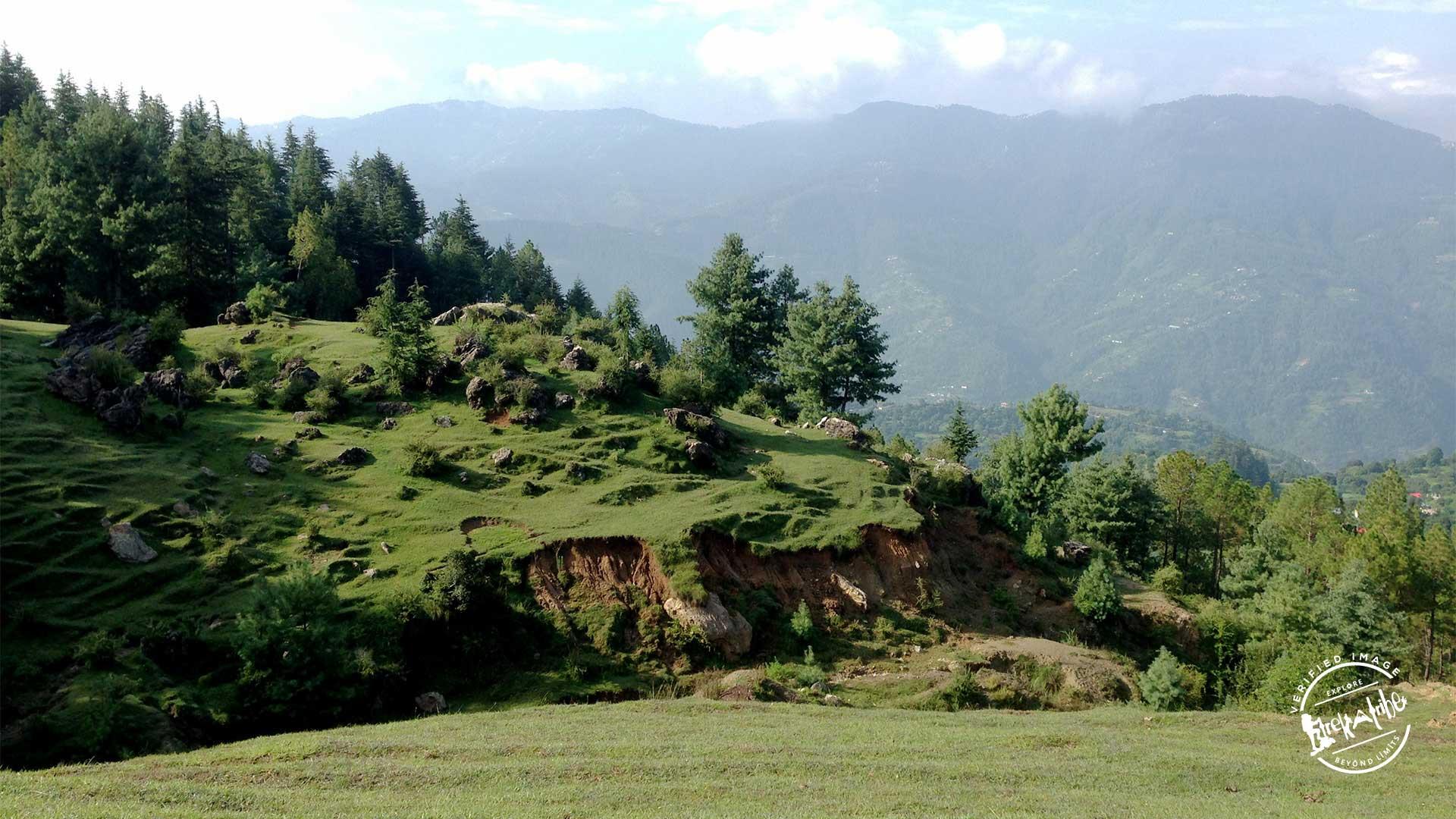Trek To Shali Tibba - Shimla