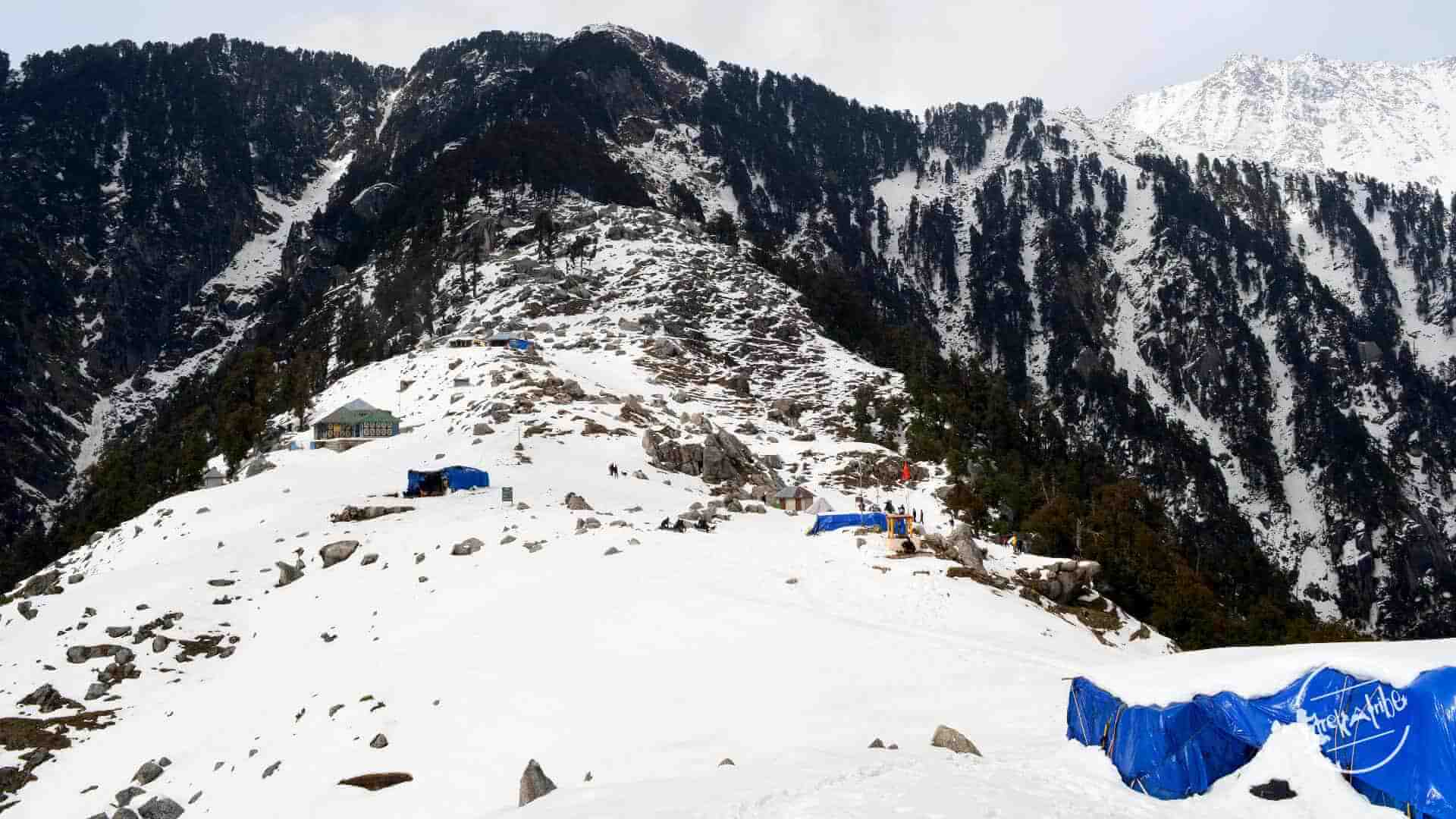 Triund trekking- Trekking in Indian Himalayas , Dhauladhar Range