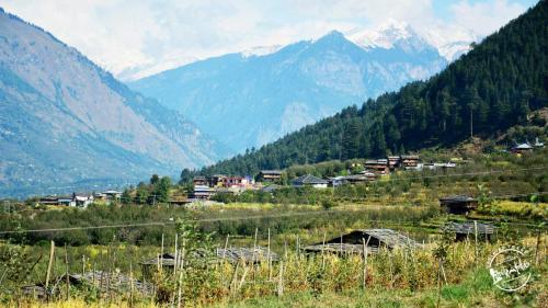 Village- Parvati Valley