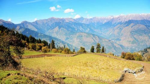 Trek to Chandrakhani pass