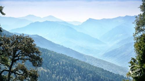 Chandrakhani pass Trek View
