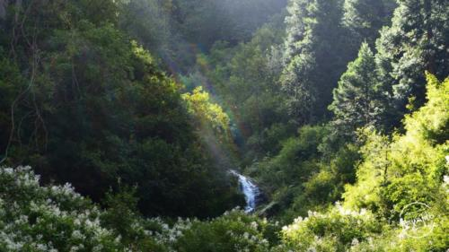 waichin valley trek (12)