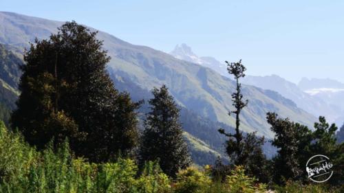 waichin valley trek (5)