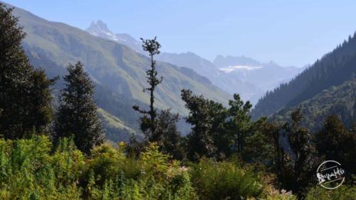 waichin valley trek (7)