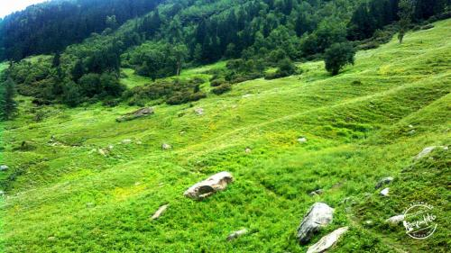 Meadows at Kheerganga