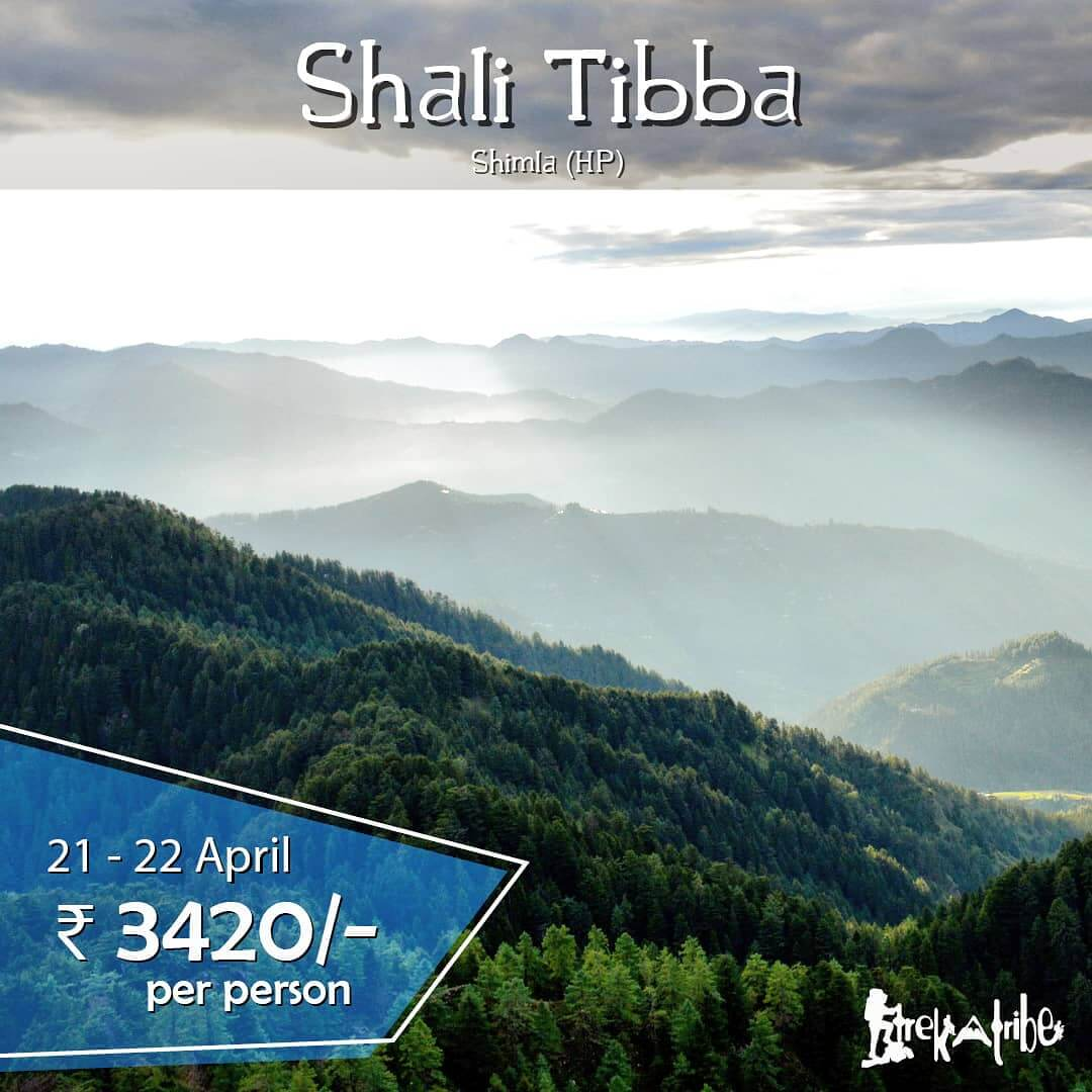 Shali Tibba Trek weekend getaway in Shimla