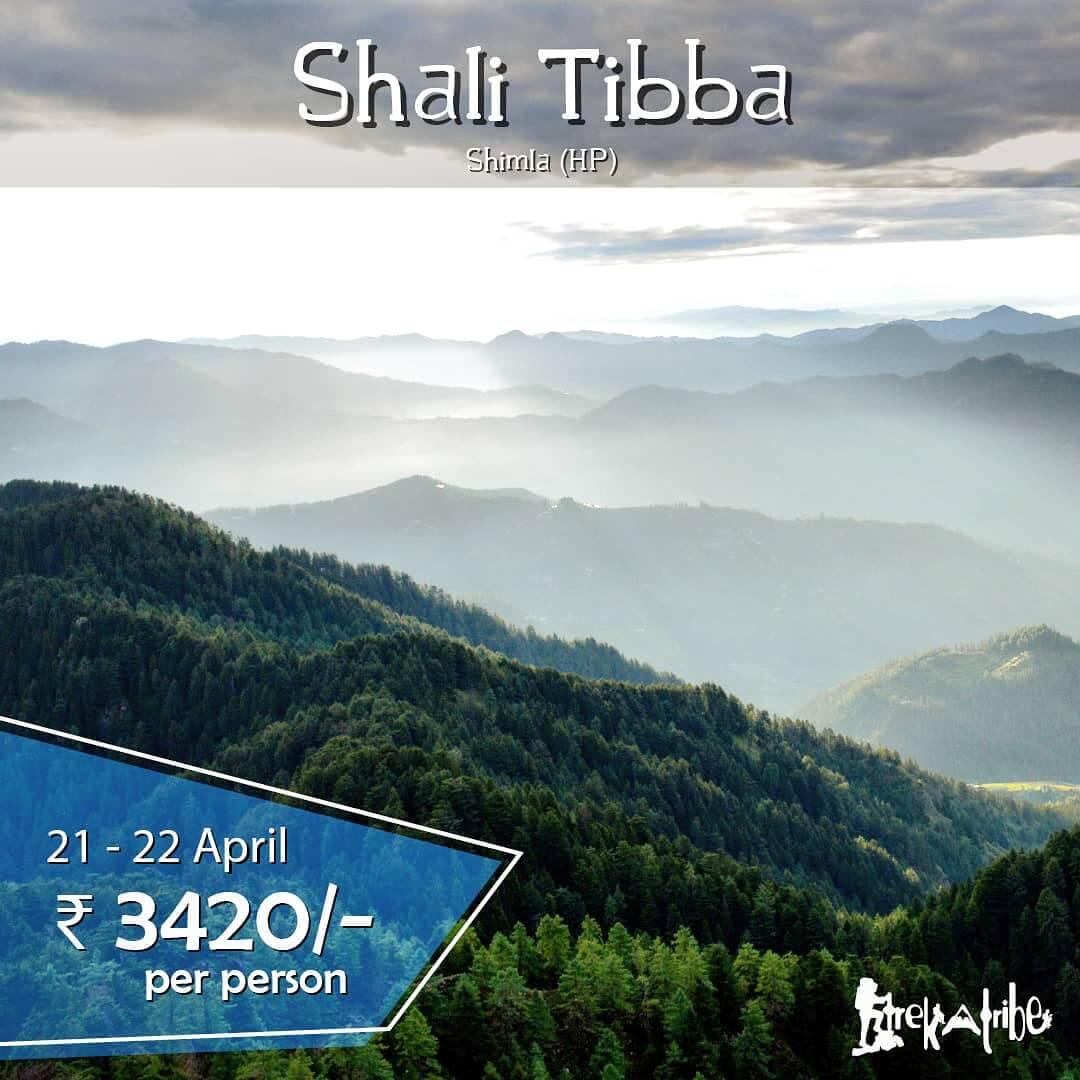 Shali Tibba Trek weekend getaway in Shimla