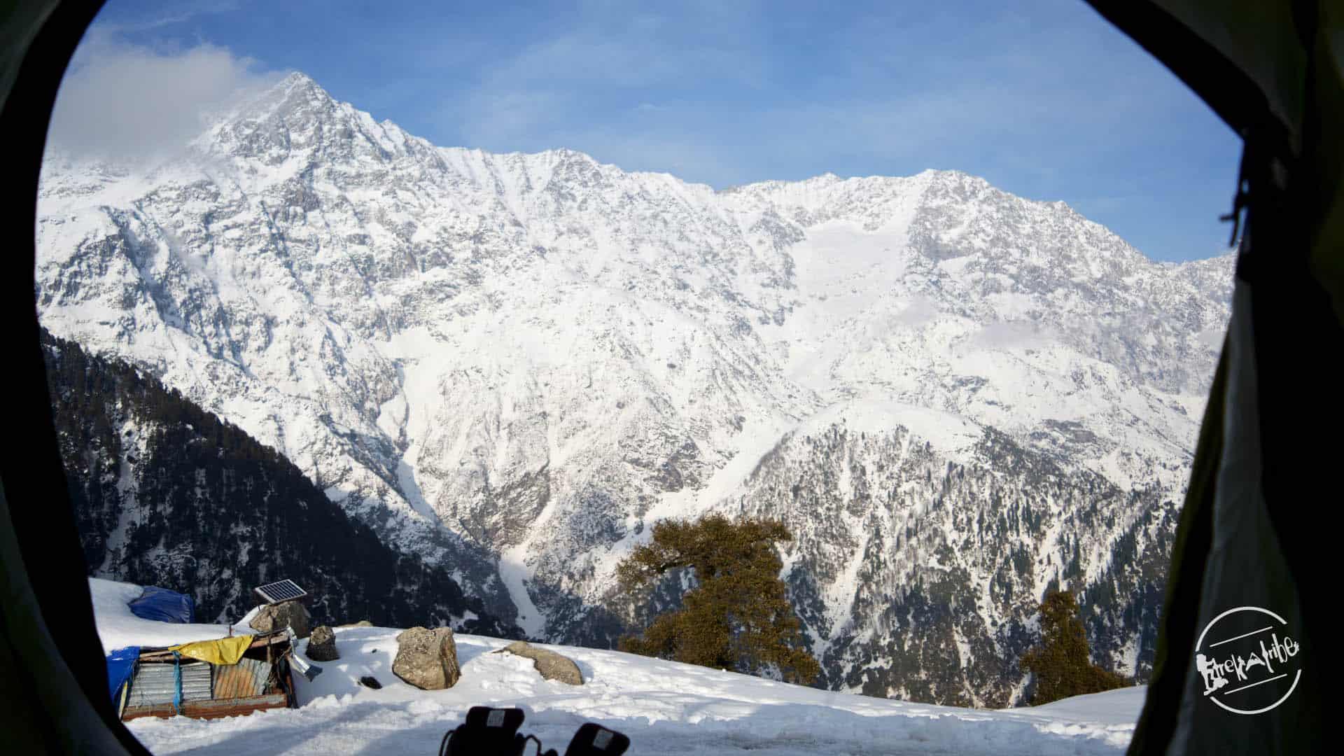 Mighty Dhauladhar Range - View form campsite - Triund Trek