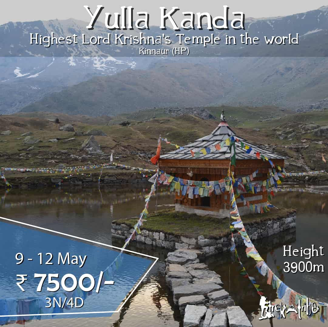 Yulla Kanda trek - highest temple of lord Krishna in Kinnaur district