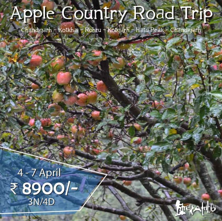 Apple Country Road Trip