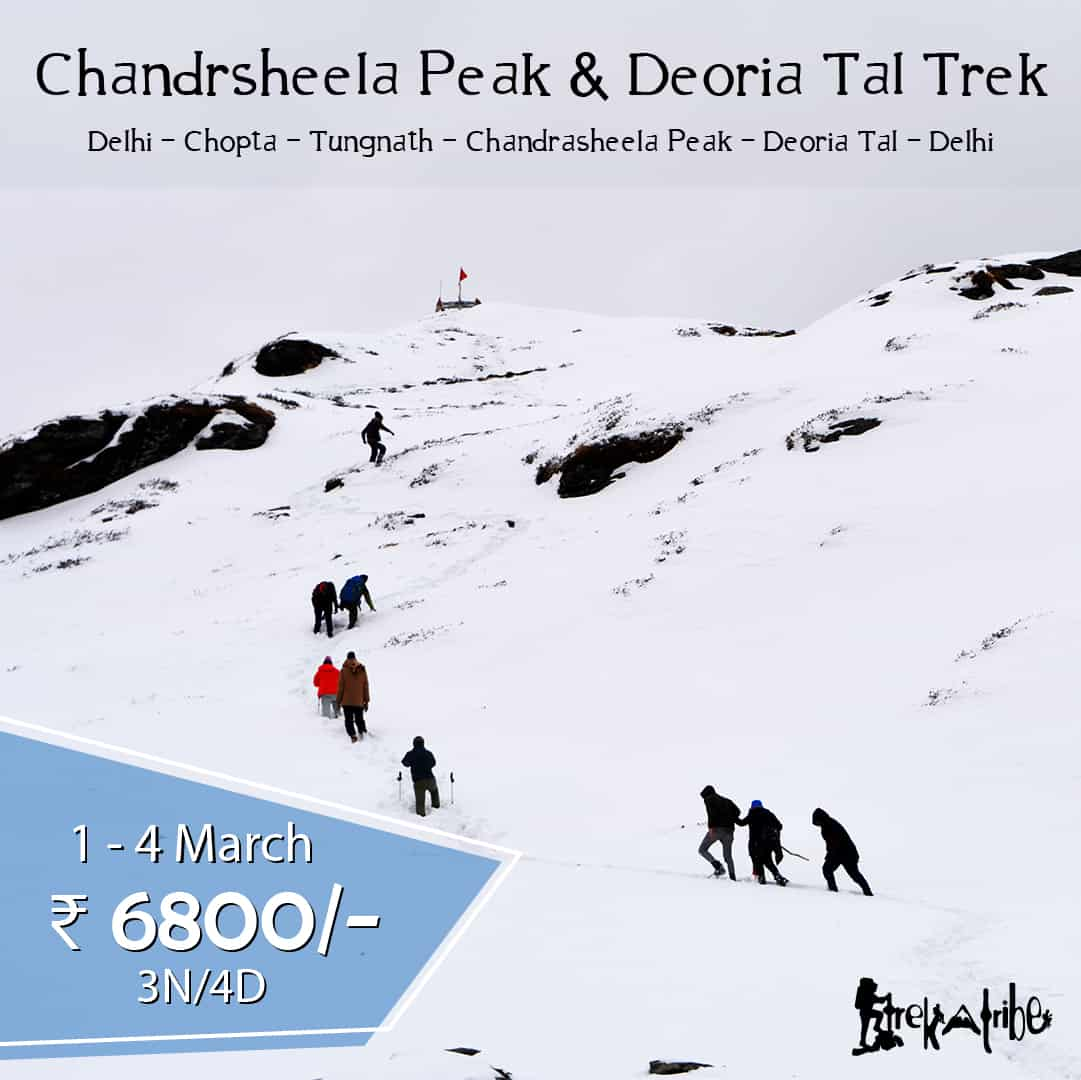 Chandrashila Peak & Deoria Tal trek