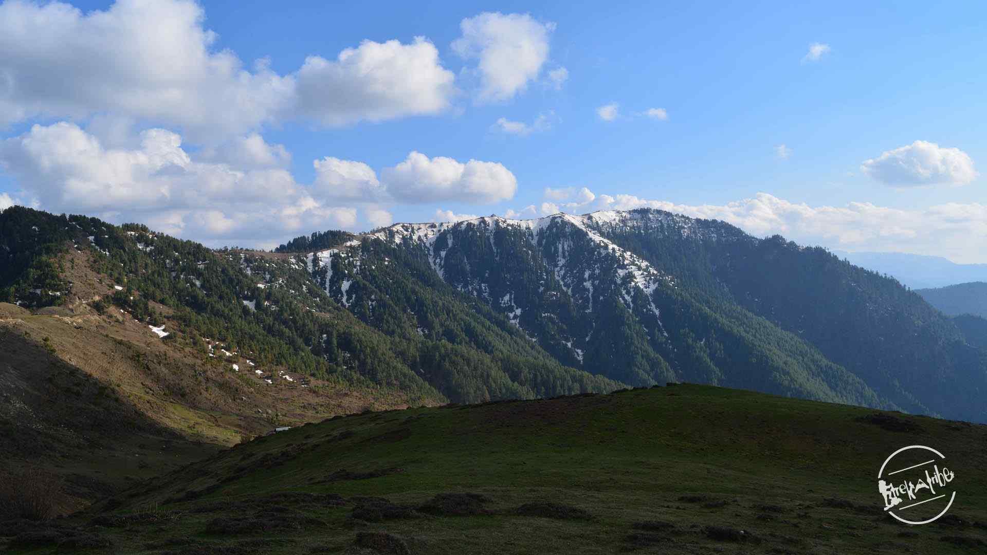 thachi valley mandi, himachal (3)