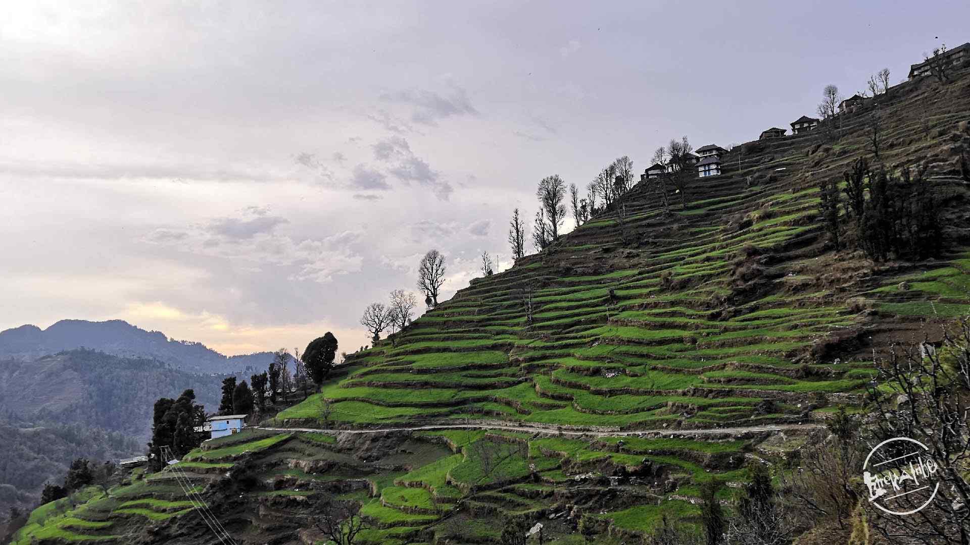 thachi valley mandi, himachal (31)