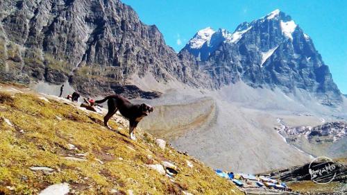 Manimahesh Lake Peak At Bharmour, Chamba
