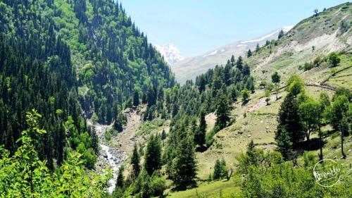 Rupin Pass Trekking