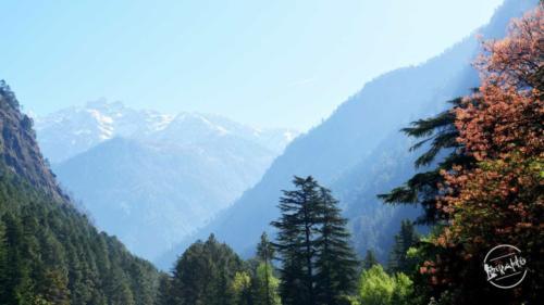 Parvati valley wilderness (3)