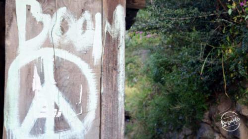 Rashol Trekking (1)-min
