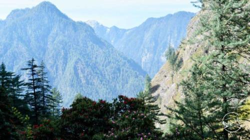 Beautiful view from Parvati Valley