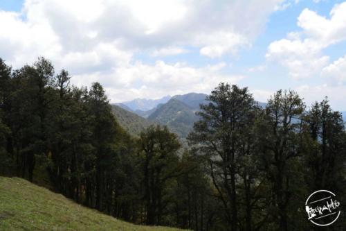 Tirthan Valley (11)