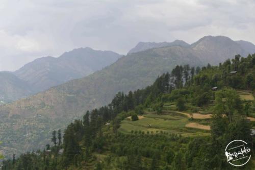Tirthan Valley (18)