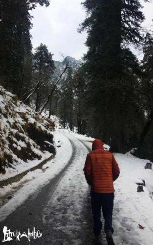 Tirthan Valley (22)