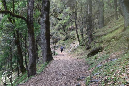 Tirthan Valley (28)