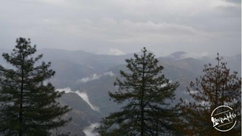 Tirthan Valley Circuit Road Trip (6)