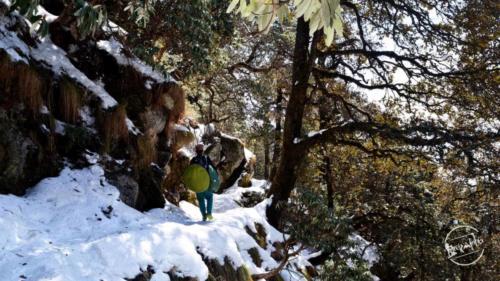 Triund Trekking (3)-min