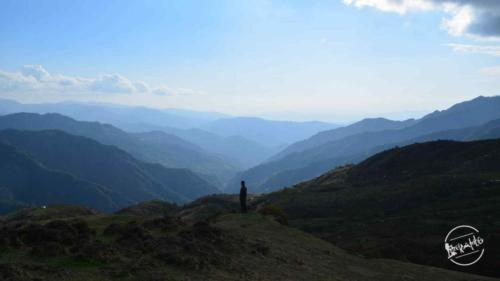 amazing view from thachi valley mandi, himachal (4)