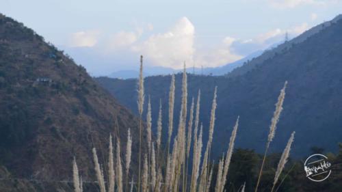 kugti village (24)