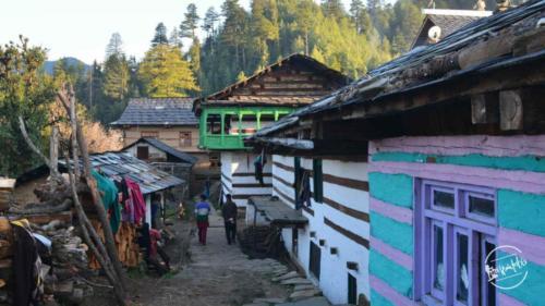 shalwad village, thachi valley - mandi, himachal