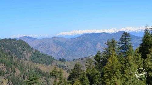 thachi valley mandi, himachal (10)