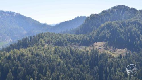 thachi valley mandi, himachal (11)