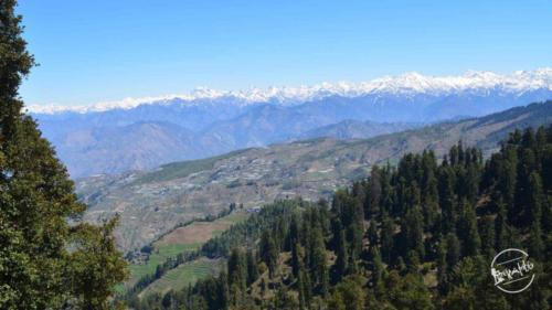 thachi valley mandi, himachal (15)