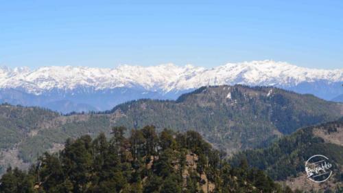 thachi valley mandi, himachal (20)