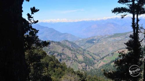 thachi valley mandi, himachal (22)