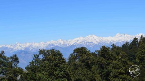 thachi valley mandi, himachal (25)