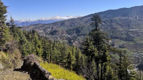 thachi valley mandi, himachal (32)