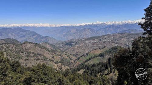 thachi valley mandi, himachal (33)