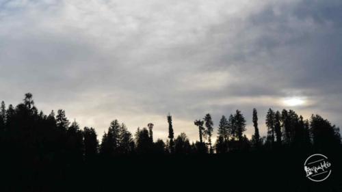 thachi valley mandi, himachal (6)