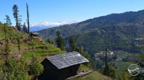 thachi valley mandi, himachal (8)