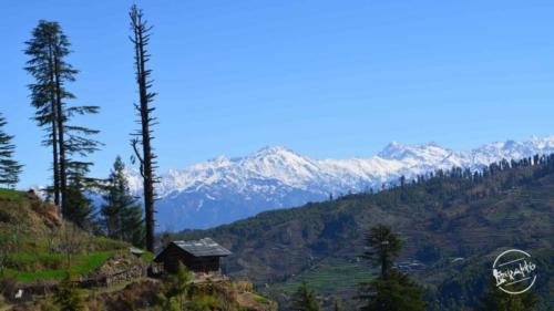 thachi valley mandi, himachal (9)