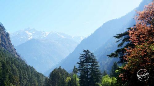 Grahan - Parvati Valley