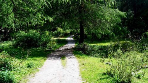 grahan trek trail