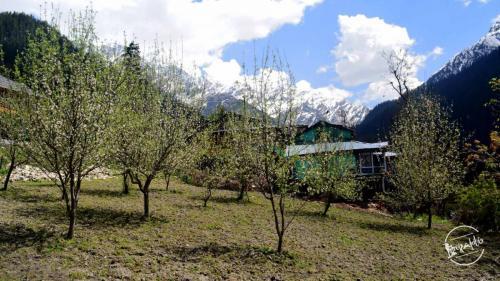 grahan trek - apple orchards