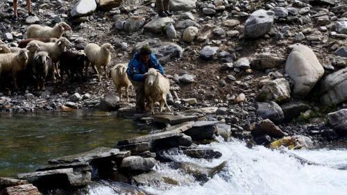 Chandernahan Lake Trek  - Pabbar River Tributary