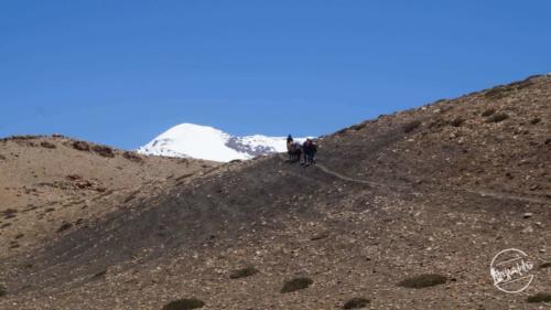 Kanamo peak expidition (17)