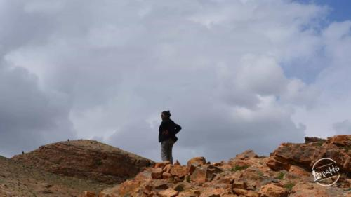 Road Trip to Kinnaur  Spiti (33)